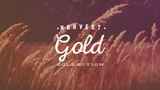 Harvest Gold Collection